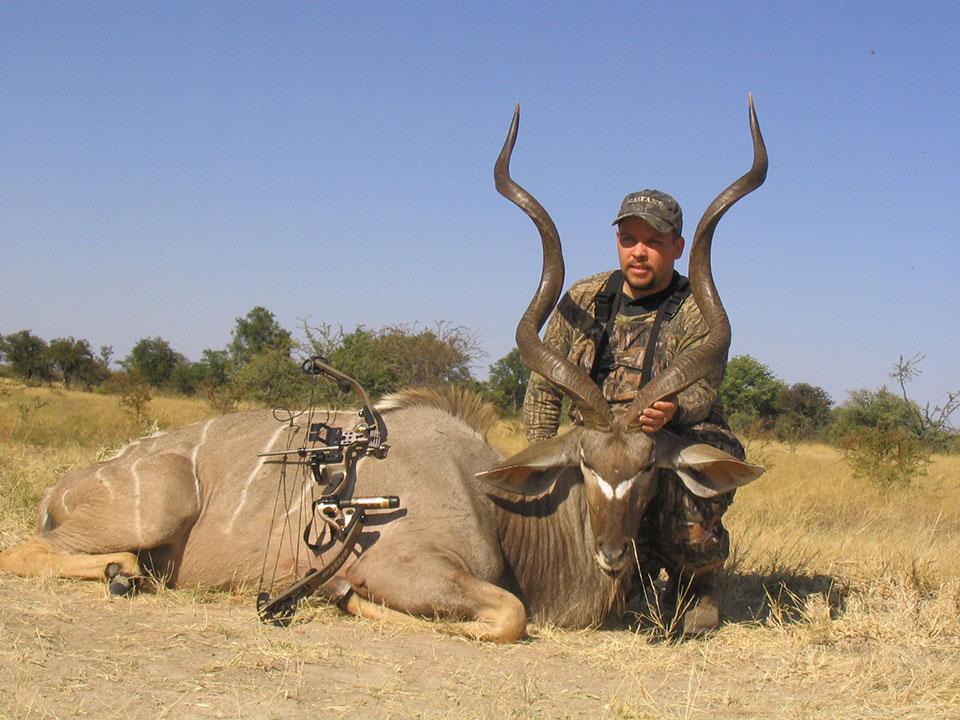 Tall-Kudu-bull-Africa.jpg