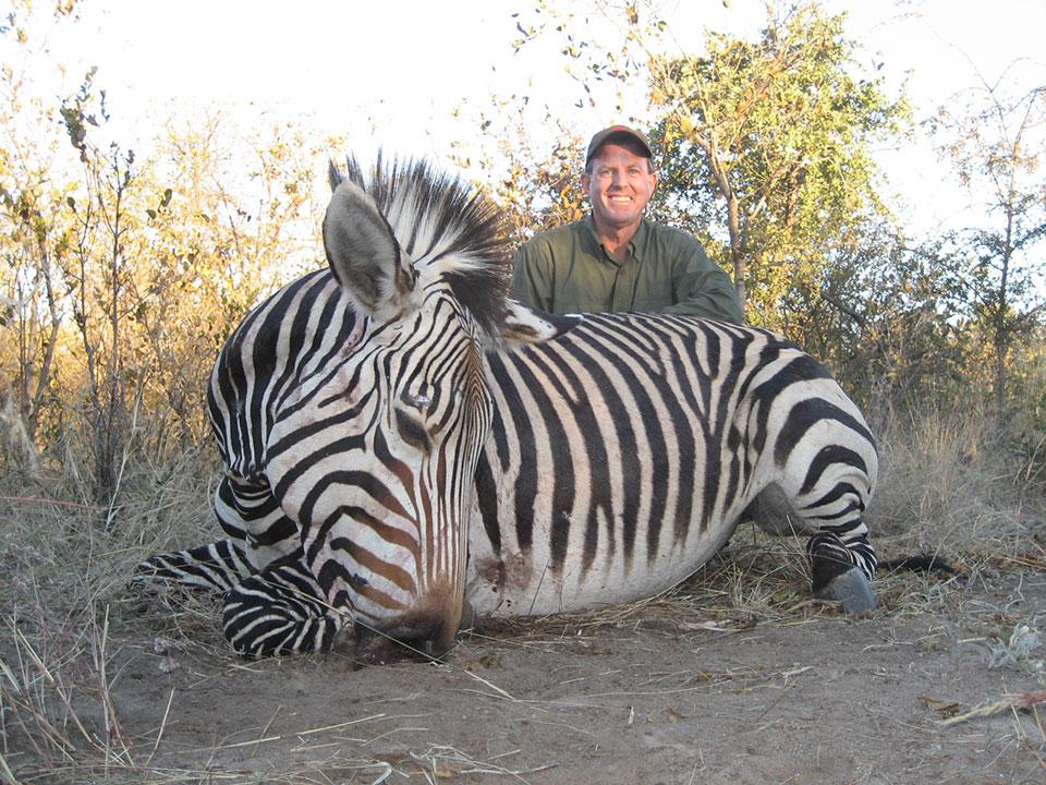bowhunting-trophy-zebra-in-Namibia.jpg