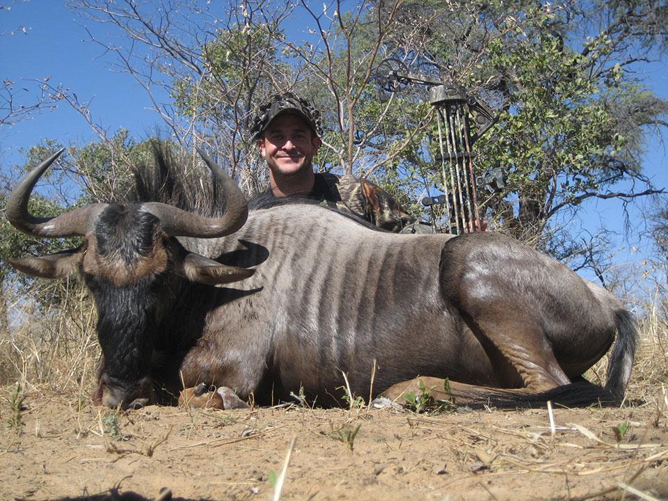 bowhunting-wildebeest-in-Namibia.jpg