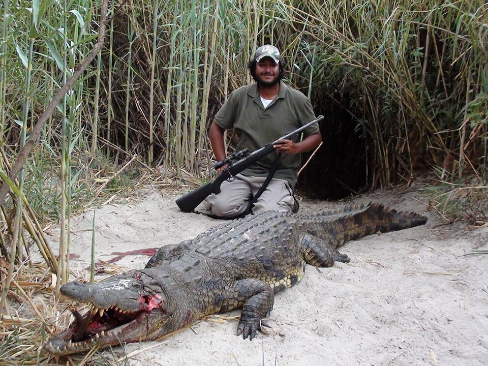 Crocodile-trophy-hunts-Namibia-Africa.jpg