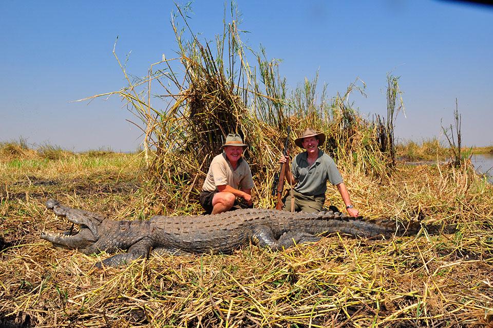 Large-trophy-crocodile-hunting-Africa.jpg