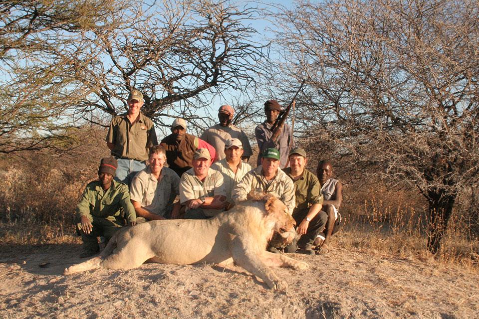 Problem-Lion-Hunt-Africa.jpg