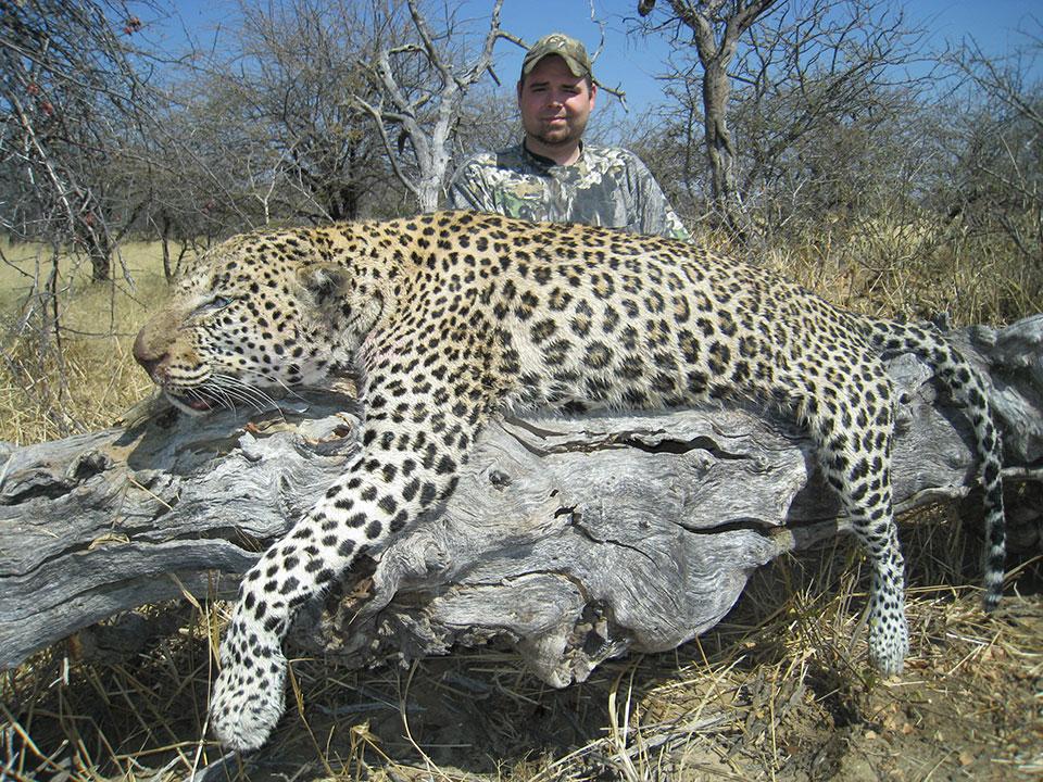 Leopard-Hunting-Namibia.jpg