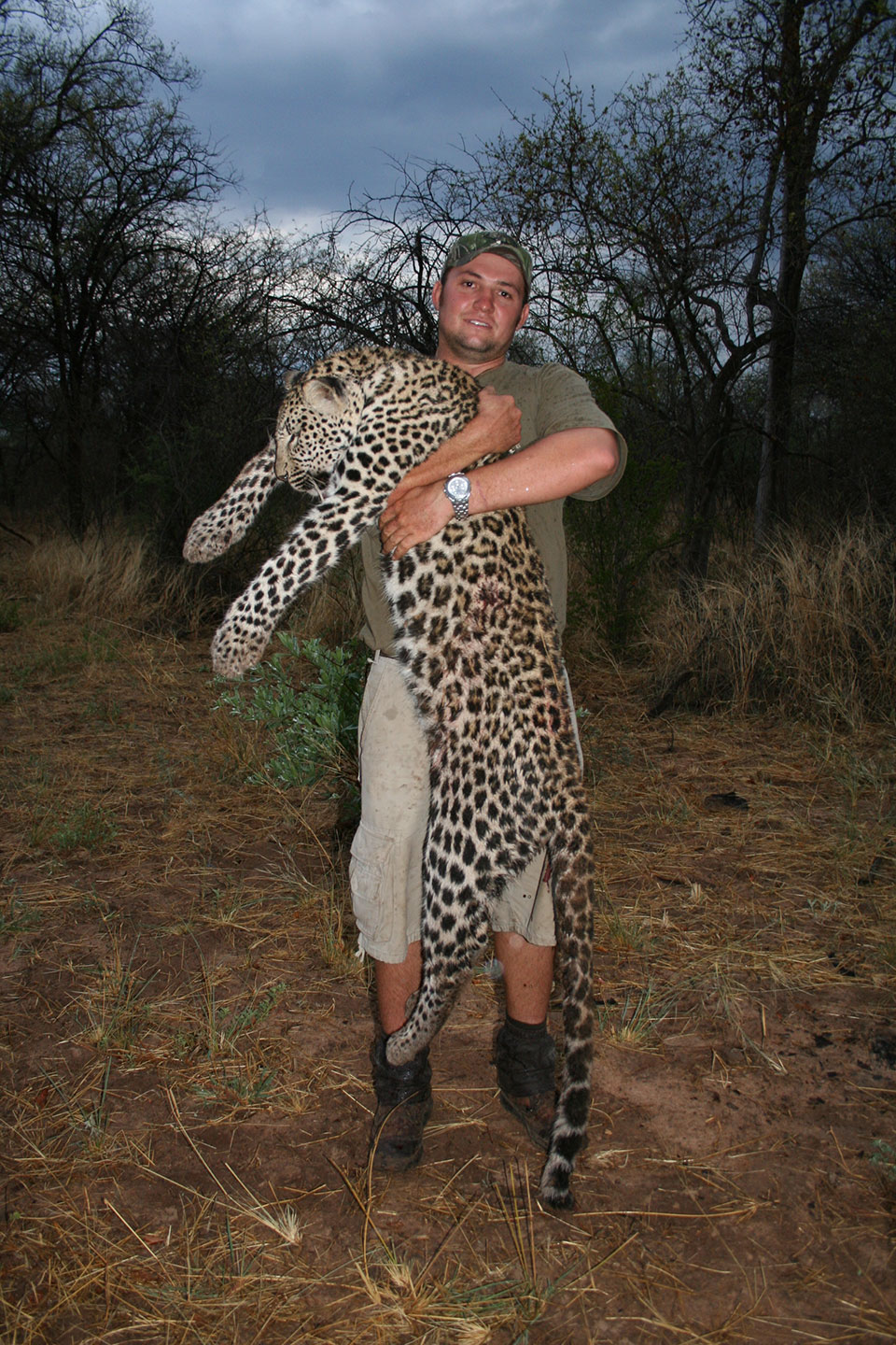 leopard-hunting-outfitters-in-Namibia-Africa.jpg