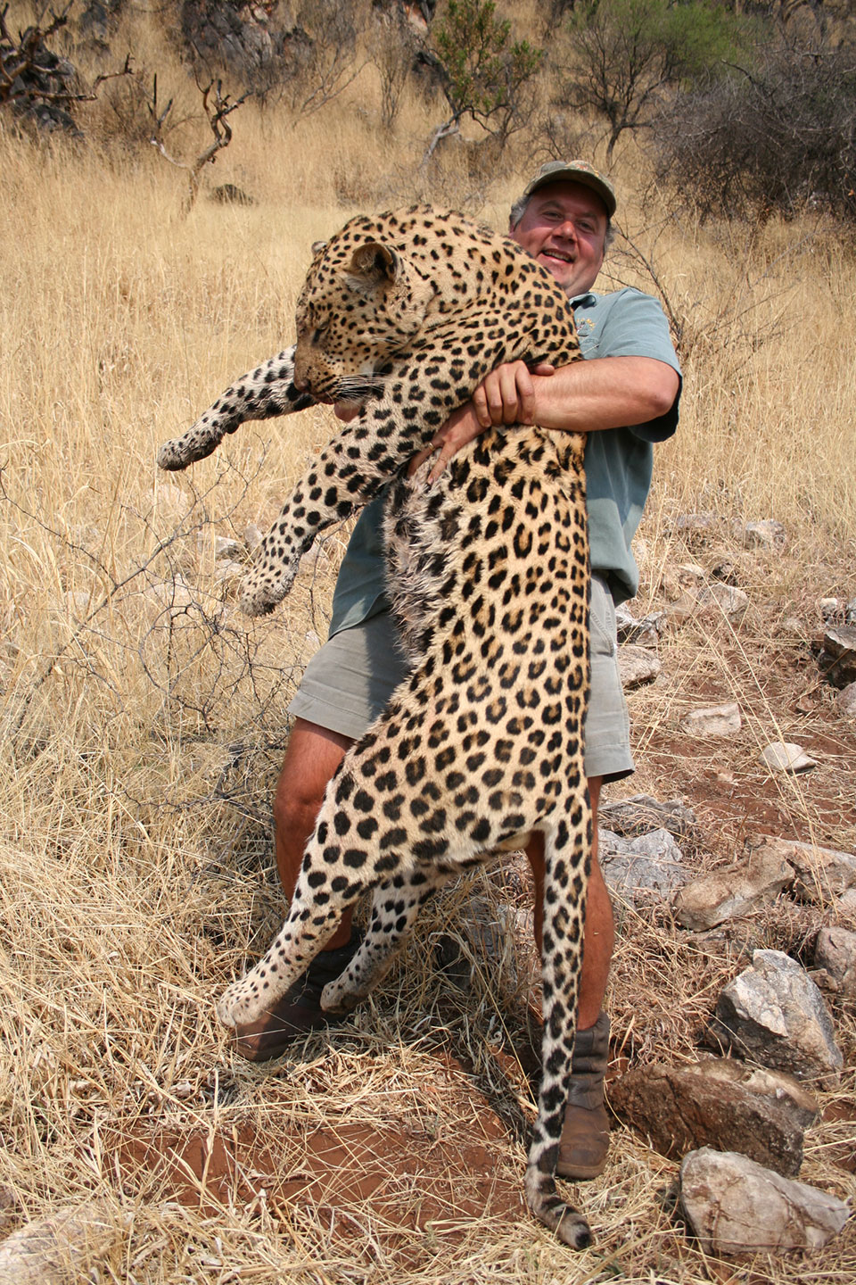 leopard-hunting-safaris-Namibia-Africa.jpg