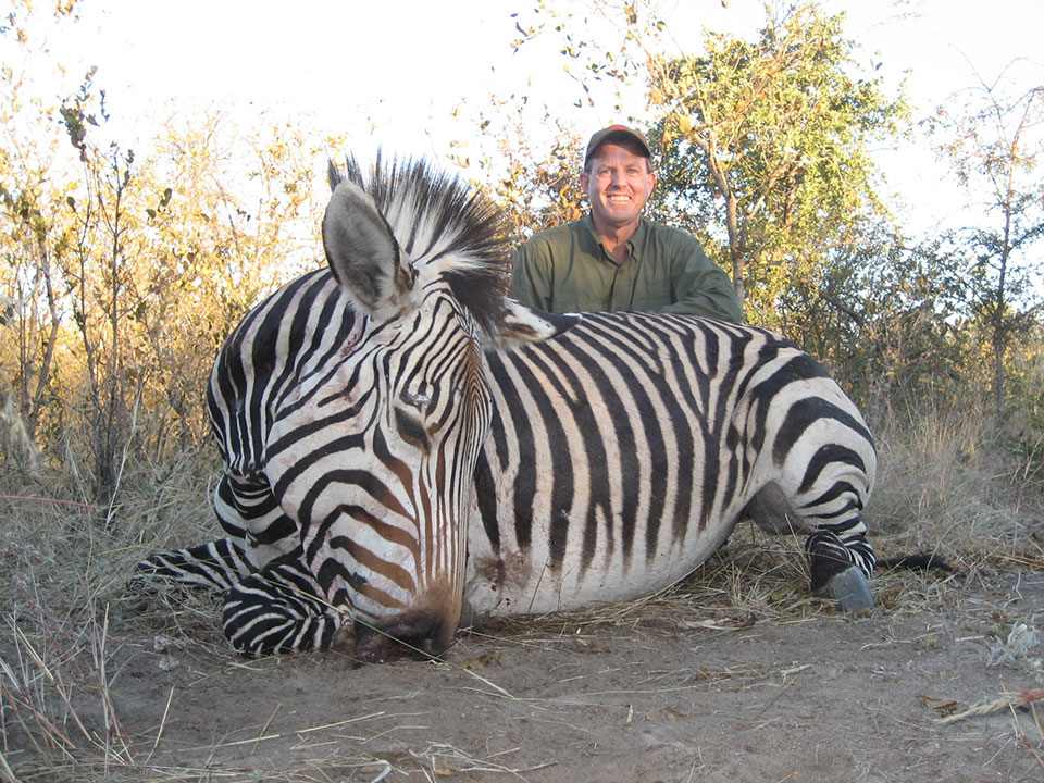 Plains-Game-Hunting-Zebra-Namibia.jpg