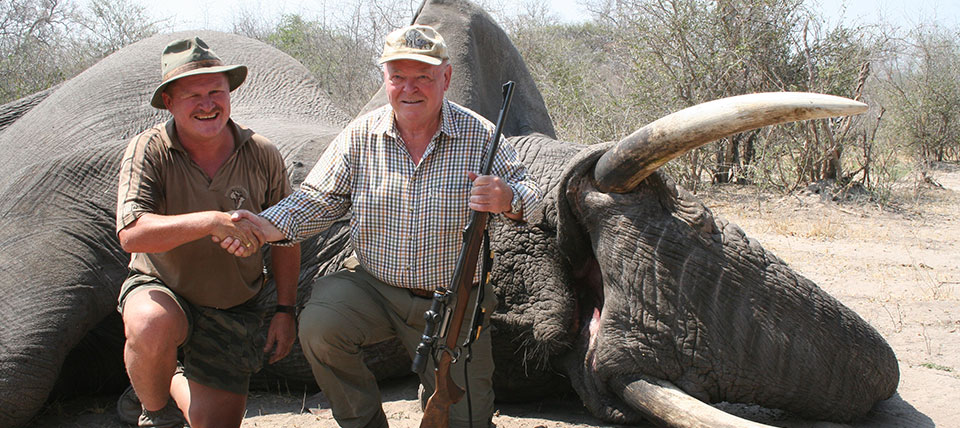 Elephant Hunting Safaris in Namibia | Hunt Trophy Elephant in Namibia, Africa