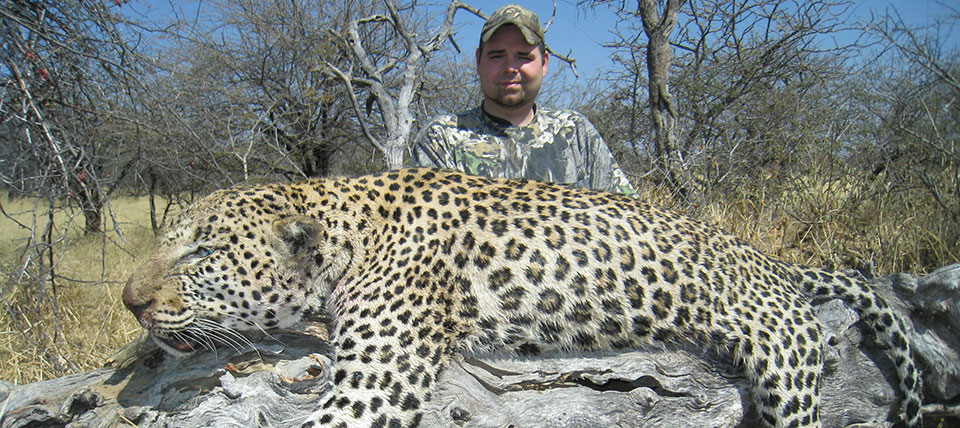 Leopard Hunting in Namibia | Trophy Leopard Hunts in Africa